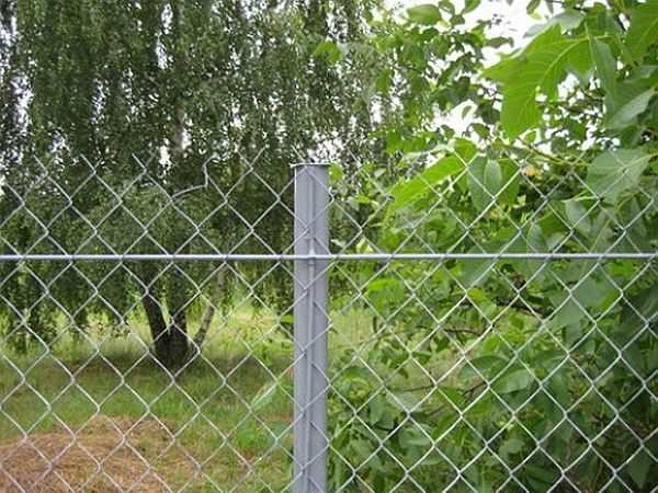 Как поставить забор из сетки-рабицы в фото