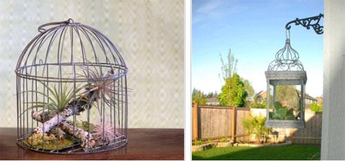 Клетки для птиц, как украшение интерьера в фото